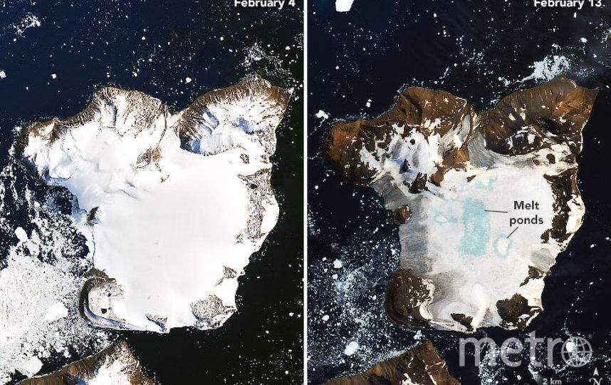 Антарктида тает из-за аномальной жары. Фото NASA EARTH OBSERVATORY