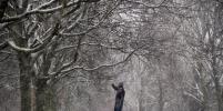 Снег в Петербурге ждут в последний день зимы и в начале марта