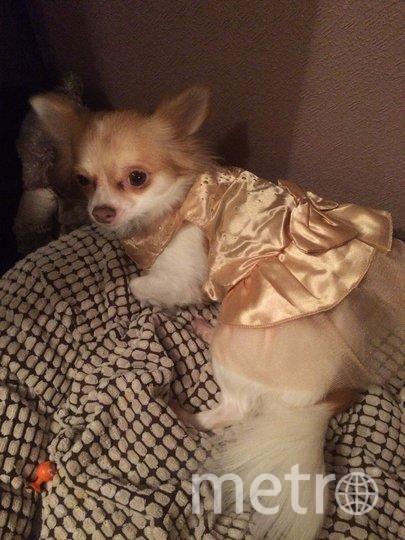 """Мила в праздничном платье. Фото Наталия Моисеева, """"Metro"""""""