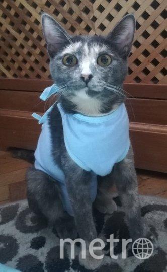 """У Тэи – вынужденная мода, после операции(. Фото Инна Лебедева, """"Metro"""""""