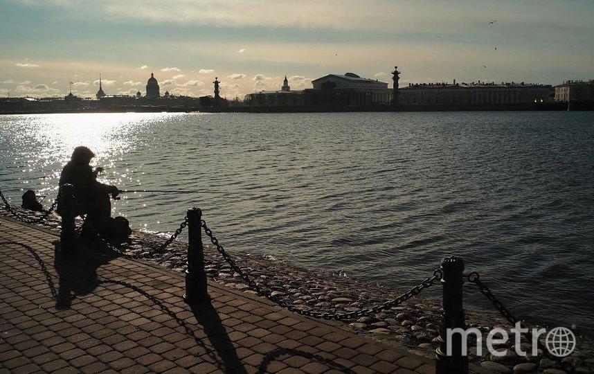 "Прошедшая зима не баловала петербуржцев снегом. Фото  instagram.com/a.danichev_photo, ""Metro"""