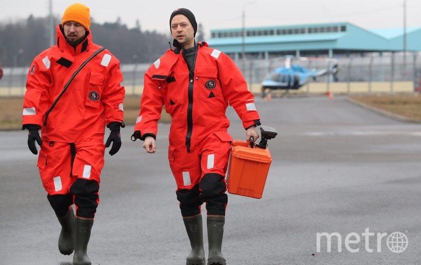 Фото Фонда друзей балтийской нерпы. Фото vk.com/sealrescue, vk.com