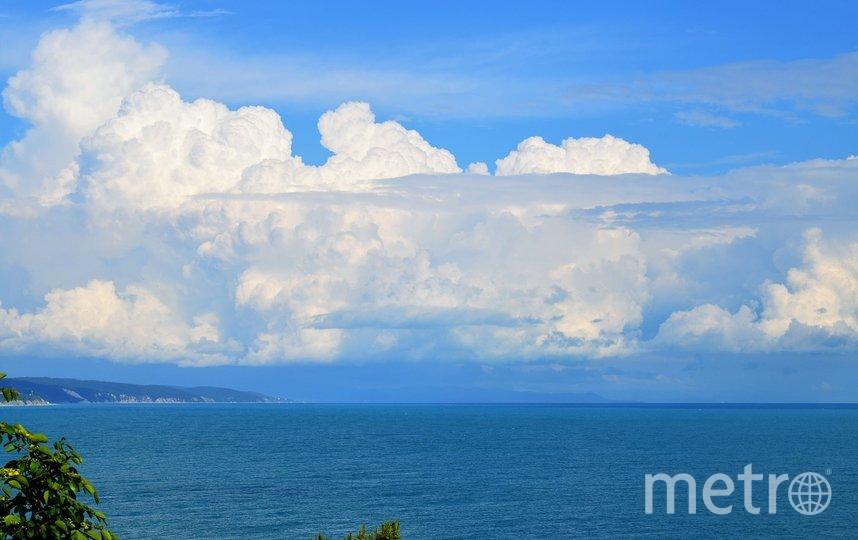 Черноморское побережье. Фото pixabay.com