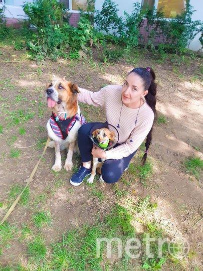 Наталия Грандовская с двумя подопечными. Милли (тогда ещё Линда) – та, которая меньше. Фото предоставила Наталия Грандовская