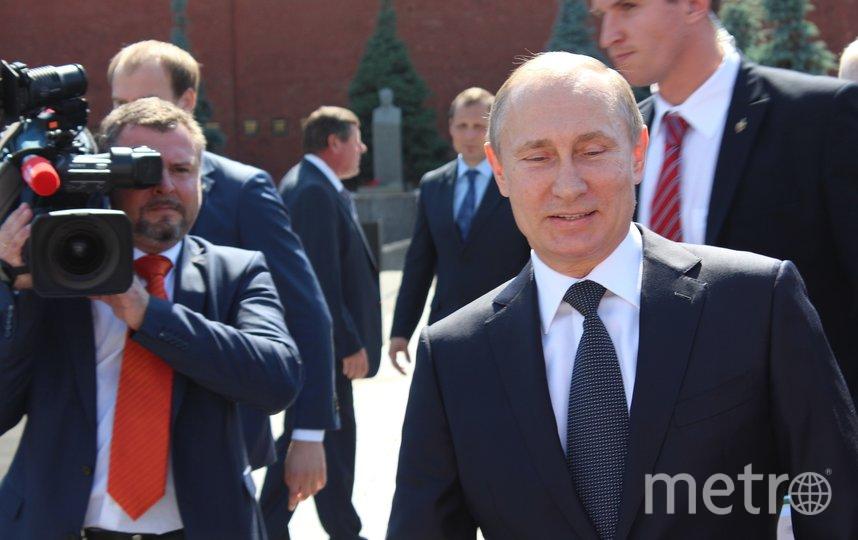 Президент России Владимир Путин. Архивное фото. Фото pixabay
