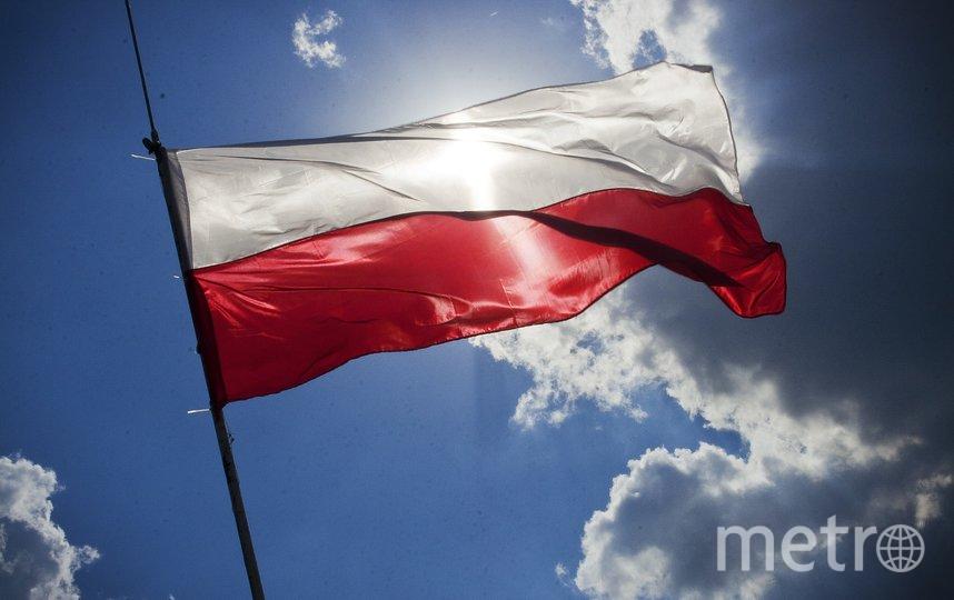Польша ввела санитарный контроль на границе с Россией. Фото Pixabay