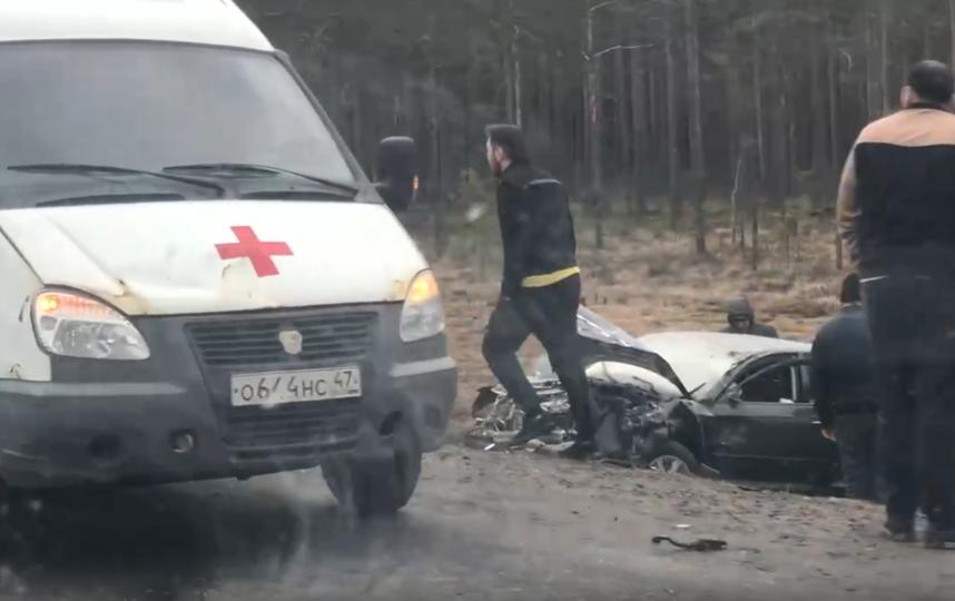 Кадры видео с места происшествия. Фото spb_today, vk.com