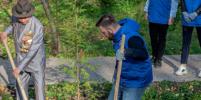В Новосибирской области появятся «Сады памяти»