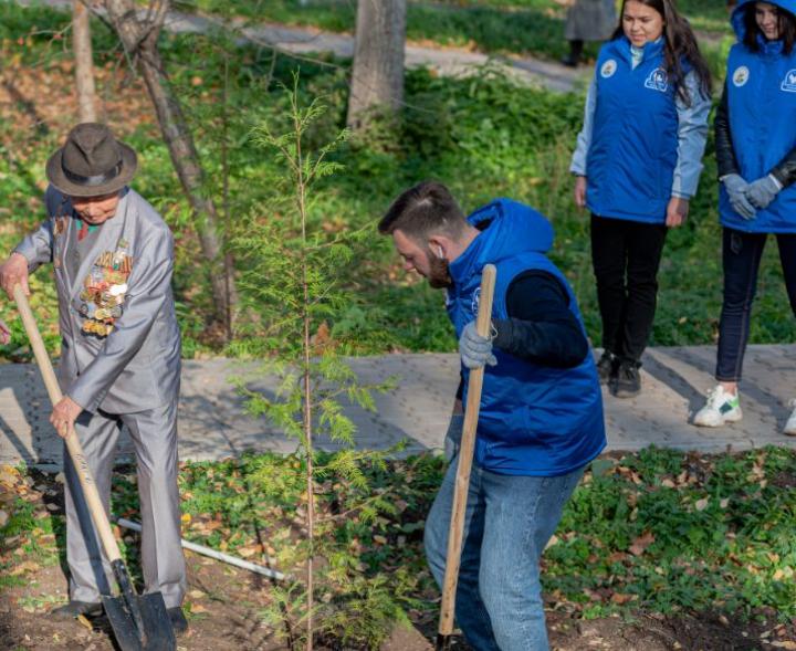 Принять участие в высадке деревьев в районах Новосибирской области с конца апреля сможет каждый житель региона.