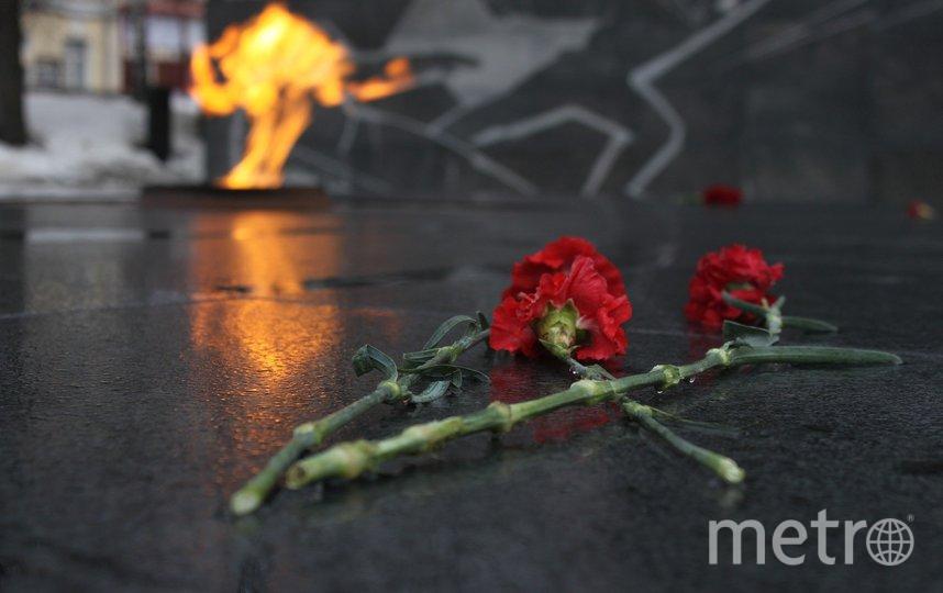 Госдума приняла закон, устанавливающий проведение общероссийской минуты молчания в День памяти и скорби 22 июня. Фото pixabay.com