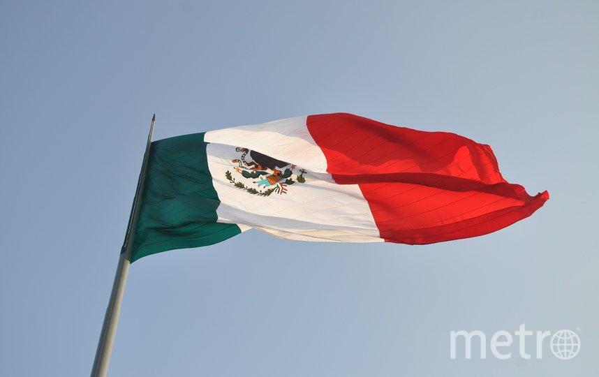 Группа учёных отыскала столицу древнего королевства майя в Мексике. Фото Pixabay
