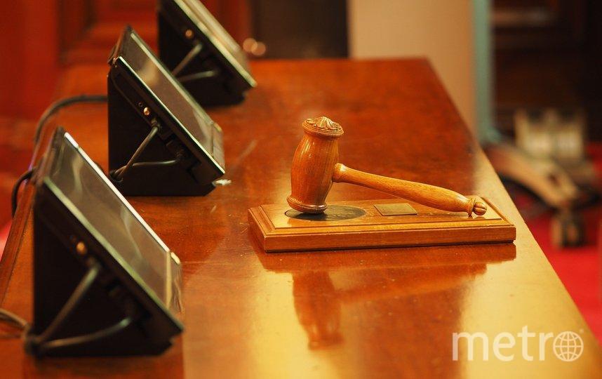 В Петербурге оштрафовали пикетчика против поправок в Конституцию. Фото Pixabay