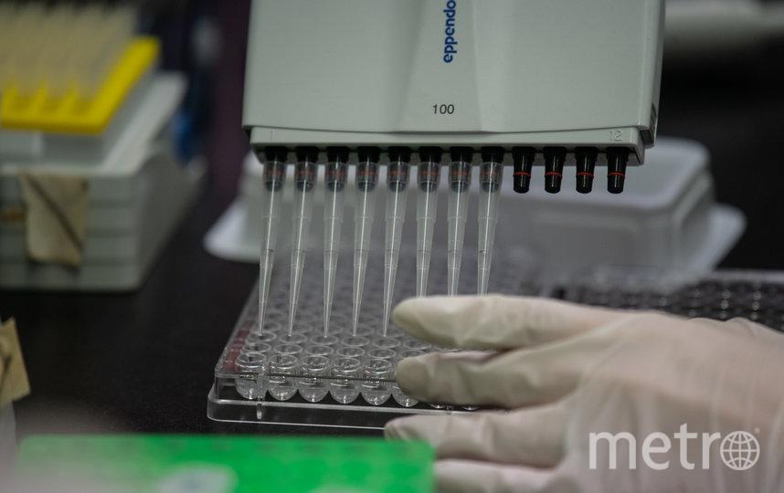 В США начались клинические испытания вакцины против коронавируса. Фото AFP
