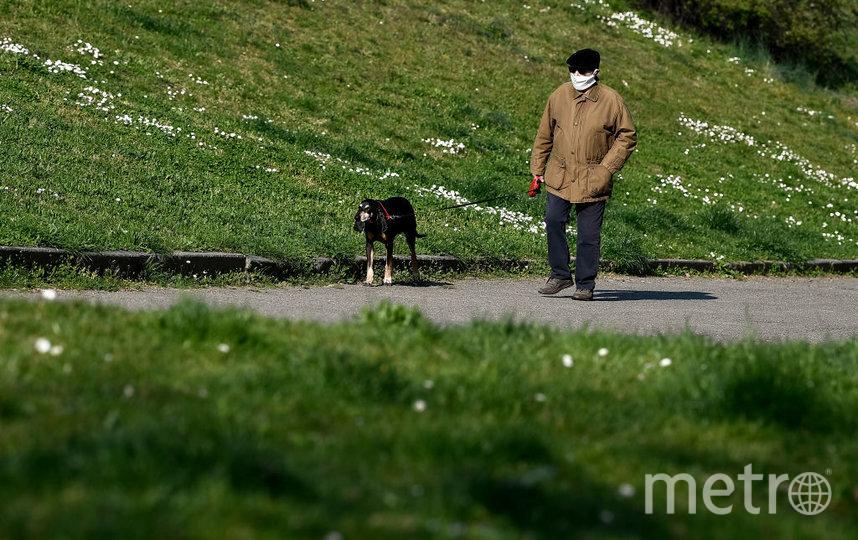 Итальянцам разрешено выгуливать собак. Фото Getty