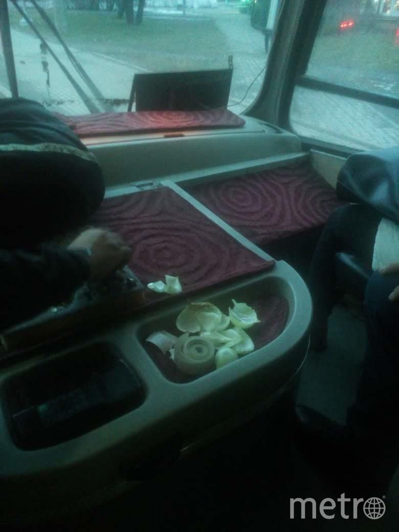 """""""Добавить шашлычка"""": В Петербурге водитель разложил в салоне маршрутки лук от коронавируса. Фото extra_call, vk.com"""
