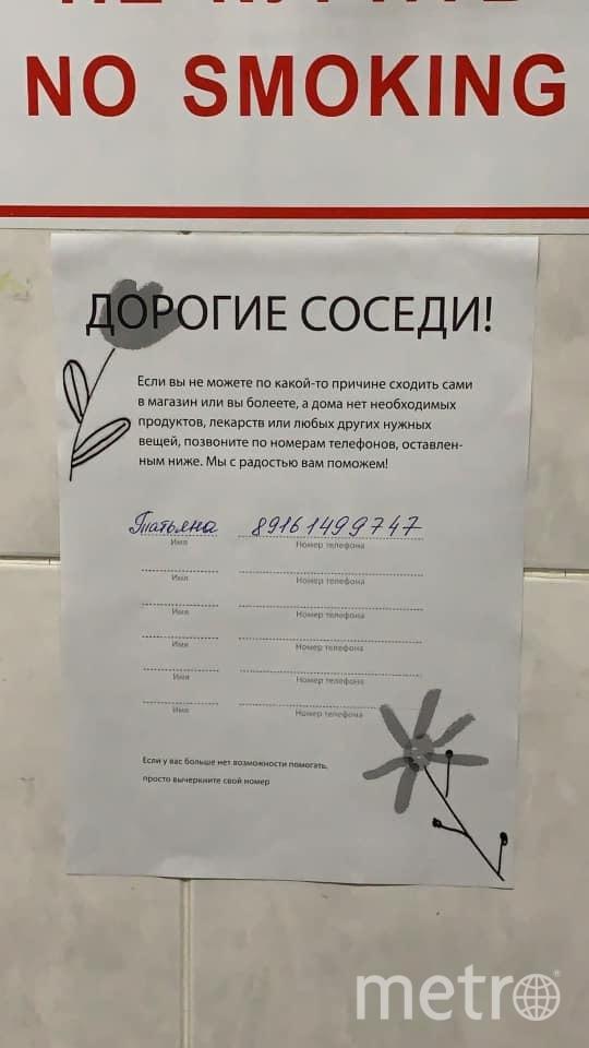 Объявления от добровольцев. Фото Татьяна Устинова