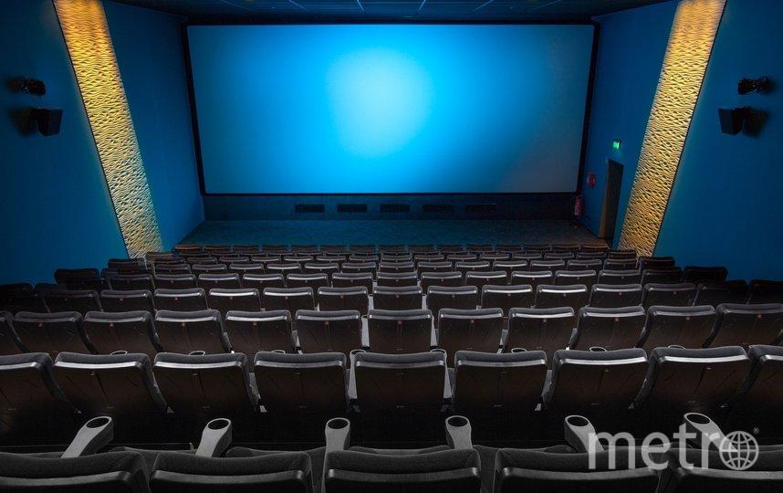 Кинотеатры Петербурга временно приостановили работу. Фото pixabay.com/ Derks24