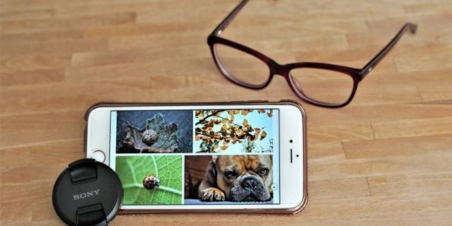 Следите за животными в режиме онлайн.