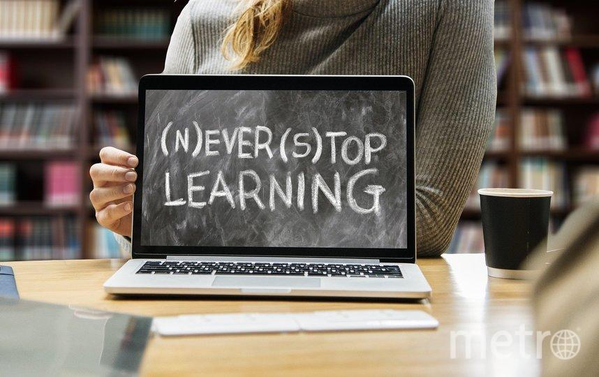 Не переставайте учиться. Фото pixabay.com