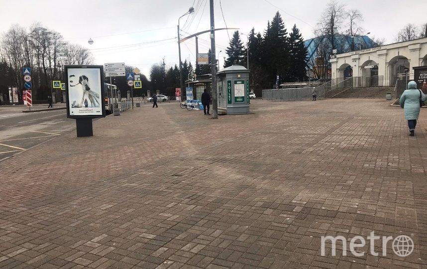 "Участок у метро ""Крестовский остров"" озеленят. Фото gov.spb.ru/gov/otrasl/blago, ""Metro"""