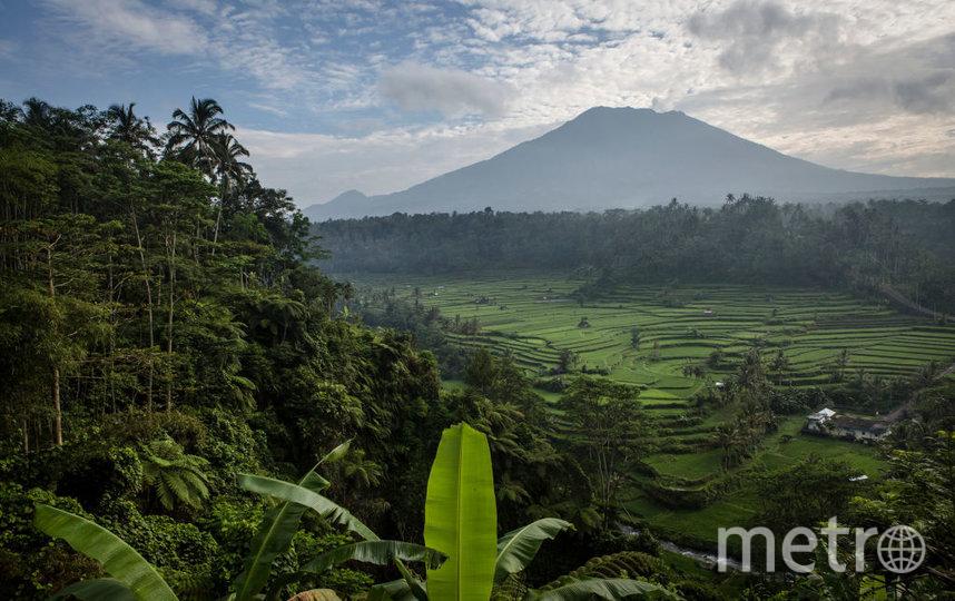 Бали. Фото Getty