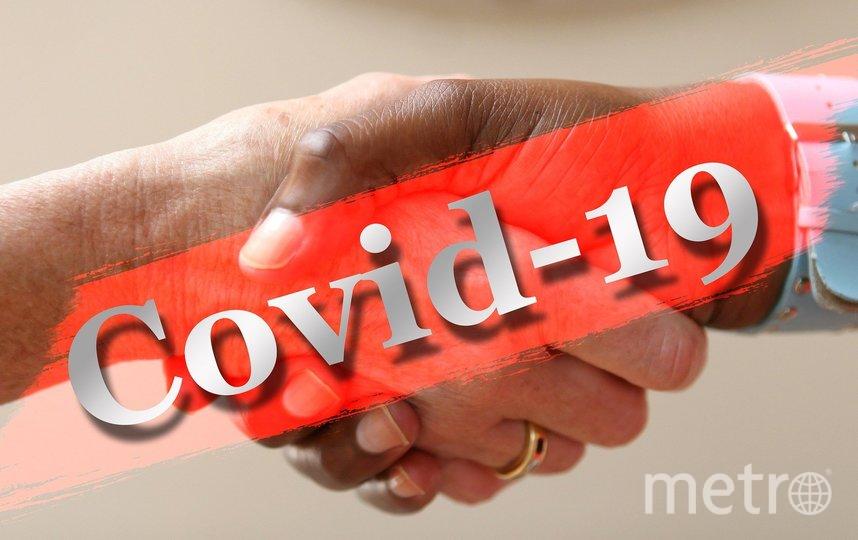Создатели сайта призывают не паниковать в борьбе с коронавирусом. Фото pixabay.com, Getty