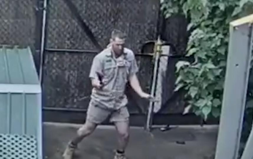 Адам Портер и его танец покорили пользователей Сети. Фото скриншот https://www.youtube.com/watch?v=Hfaf94hoshI&feature=emb_title, Скриншот Youtube