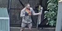 Танцующий сотрудник зоопарка в Мельбурне покорил пользователей Сети: видео