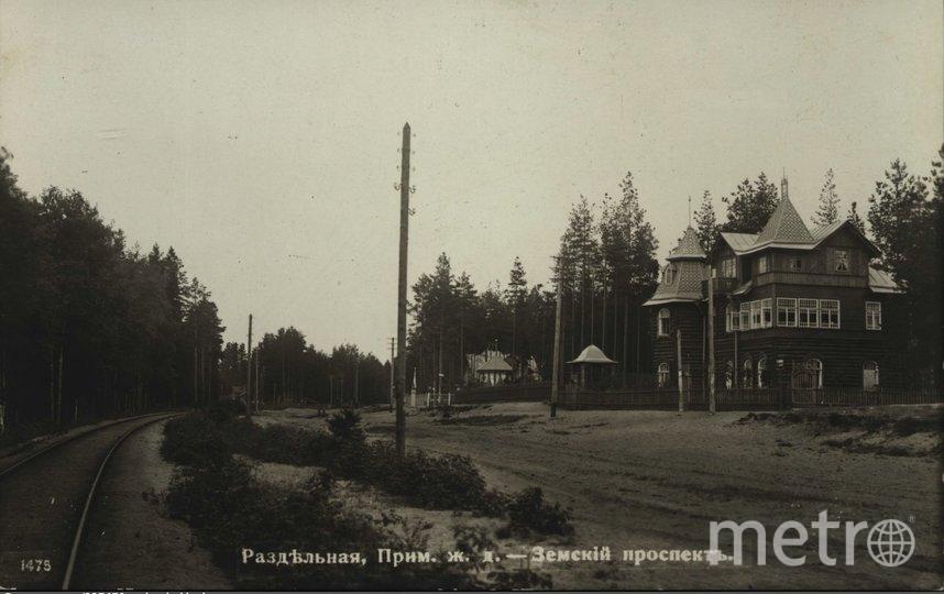 Приморское шоссе. Фото КГИОП