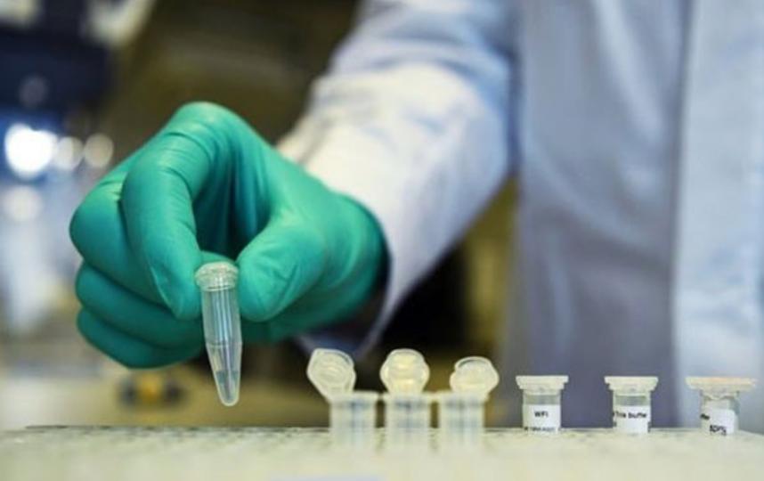 В России представили препарат от коронавируса. Фото Скриншот Instagram: @fmba_of_russia