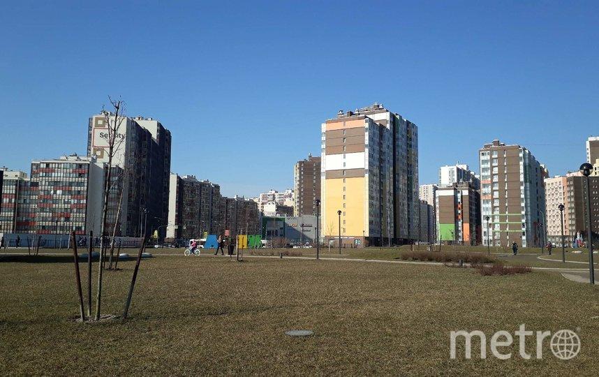 """В парках - не многолюдно, многие держат дистанцию или гуляют в масках. Фото Анна Лутченкова, """"Metro"""""""