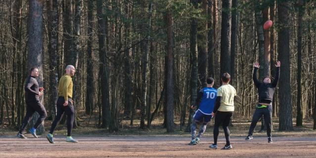 Парк Сосновка.