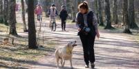 Петербуржцы провели в парках первый день карантина: фото