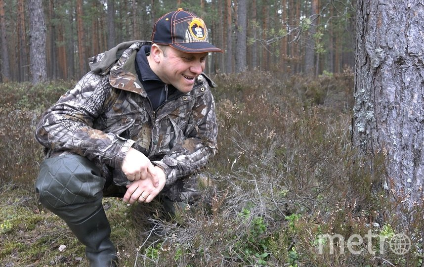 Биолог встретил гадюк после зимней спячки. Фото Павел Глазков.