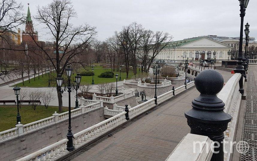 Александровский сад. Фото Василий Кузьмичёнок