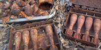 В Ленобласти нашли боеприпасы времён войны