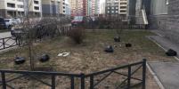 Петербуржцы выбрасывают мусор из окон во время самоизоляции