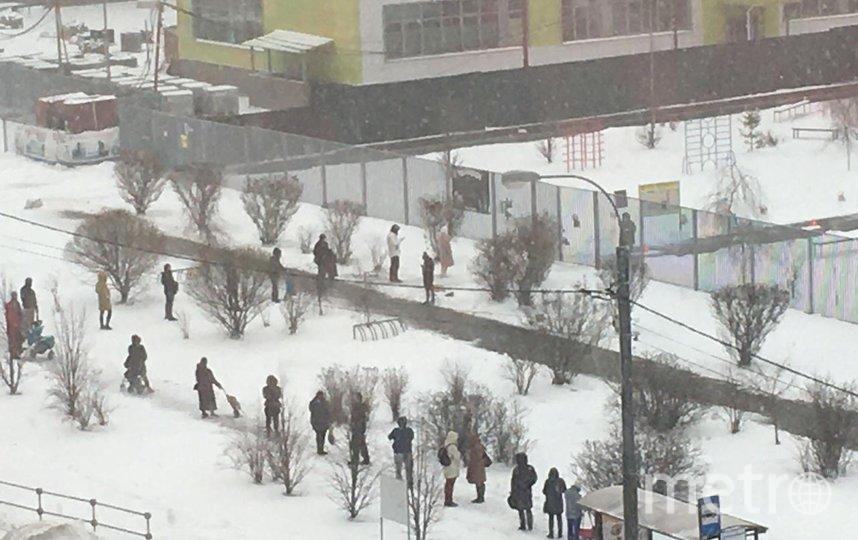 Похоже, в этой школе в Новой Москве или все родители пришли за продуктовыми наборами не вовремя, или сотрудники забыли назначить каждому время – образовалась очередь. Но дистанцию все соблюдают. Фото Ольга Cемипятова