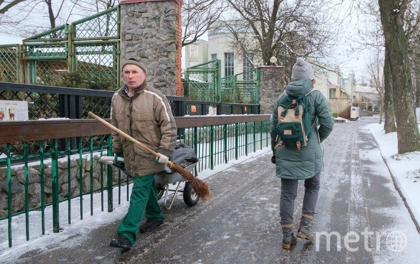 """Сотрудники зоопарка каждый день приходят на работу. Фото Алена Бобрович, """"Metro"""""""