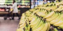 Роспотребнадзор призывает россиян не делать больших запасов еды
