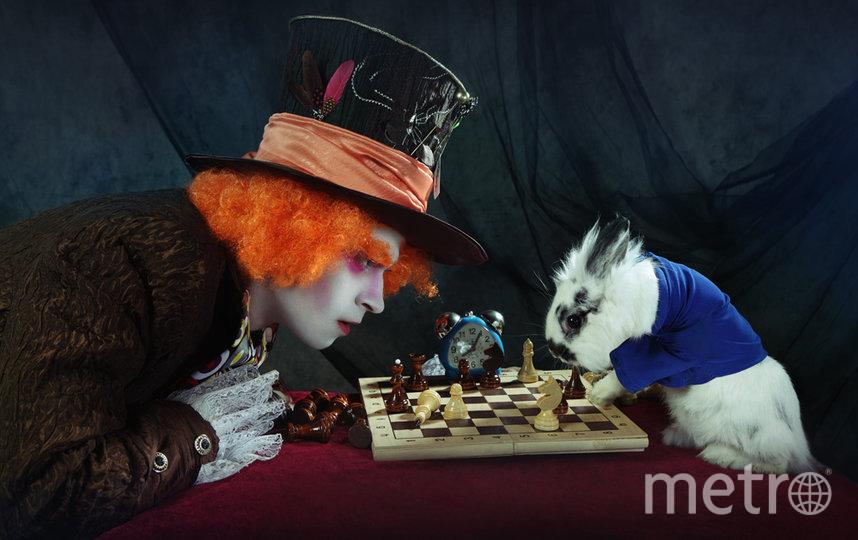 "Кадр из фильма ""Алиса в стране Чудес"". Фото WDSSPR"