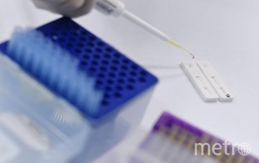 """По оценкам научного центра """"Вектор"""", тестирование вакцины от коронавируса на людях может начаться уже в июне. Фото AFP"""