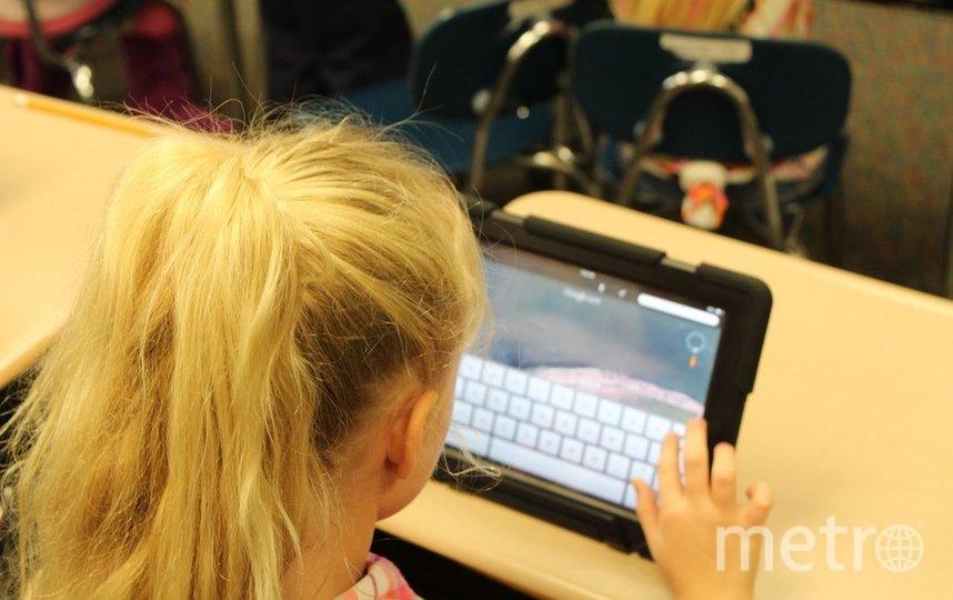 Детям рекомендовано обучаться дистанционно. Фото SchoolPRPro / pixabay.com