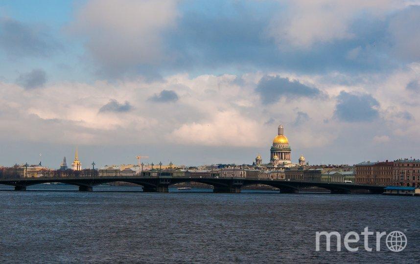 В Петербурге преследуют нарушителя карантина. Фото pixabay.com