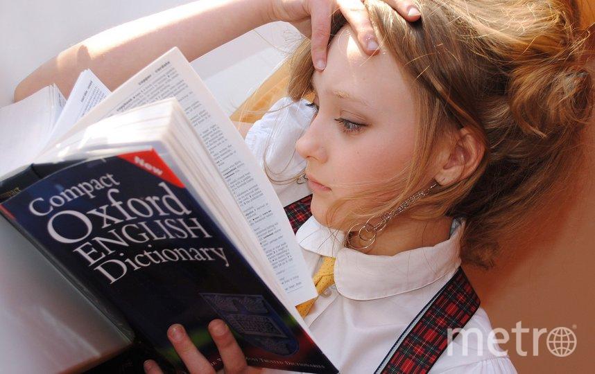 Выучите иностранный язык. Фото pixabay.com