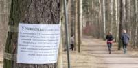 Более тысячи полицейских контролируют запрет посещения скверов и парков Петербурга