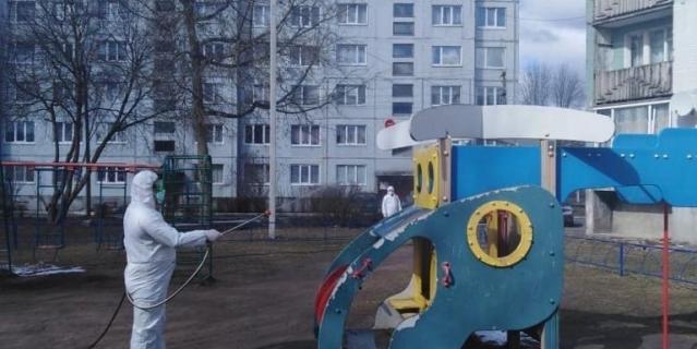 Обработка в Ленинградской области.