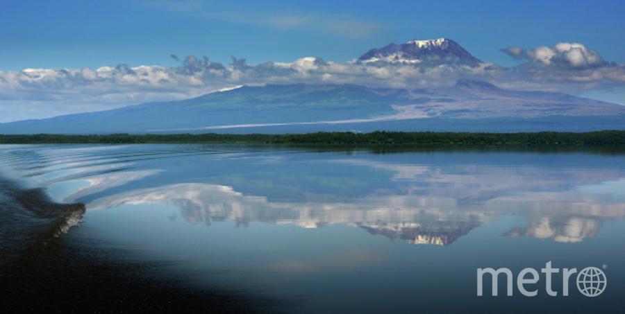 Вид на вулкан Шивелуч с берега реки Камчатка в Камчатском крае. Фото РИА Новости