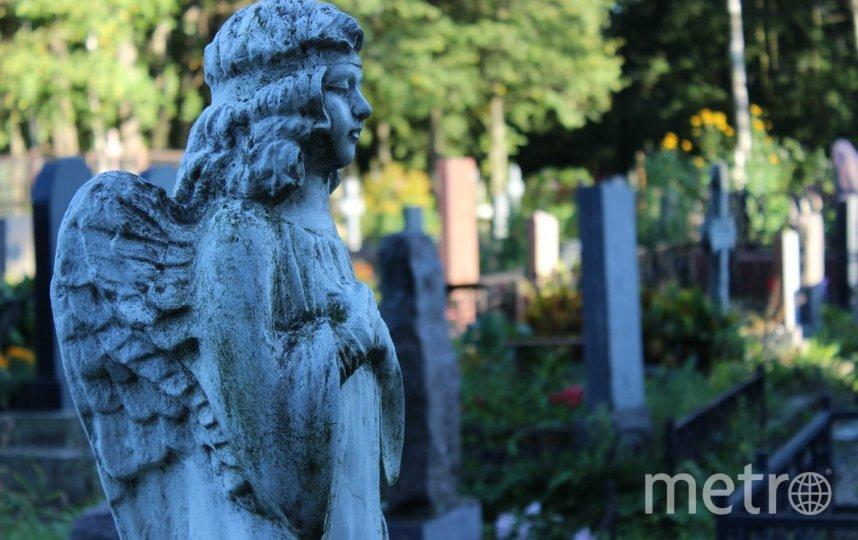 """Смоленское кладбище. Фото Дарья Есенина., """"Metro"""""""