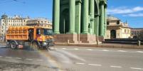 Улицы Петербурга моют с дезинфицирующими растворами: фото